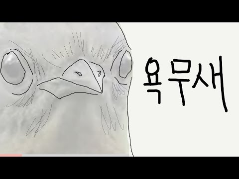 욕하는 새 (우왁굳 반응)