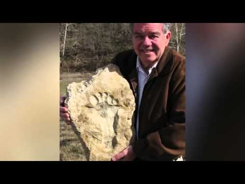 Footprints in stone - Overwhelming evidence of dinosaurs and man together