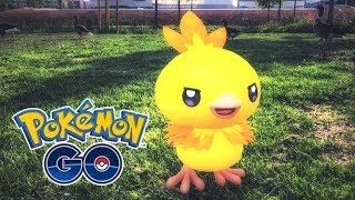 CATCHING *SHINY TORCHIC* IN POKÉMON GO! (COMMUNITY DAY w/ Shiny Blaziken & Combusken)