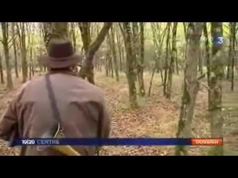 la-sologne-pisode-5-la-chasse.html