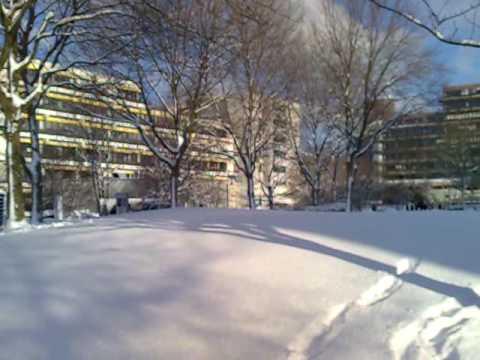 Schnee / Uni Essen
