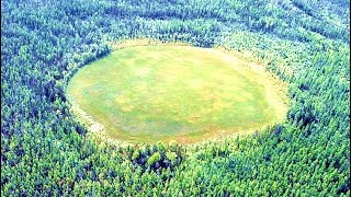 The Mysterious Rings That Predate The Amazon Rainforest