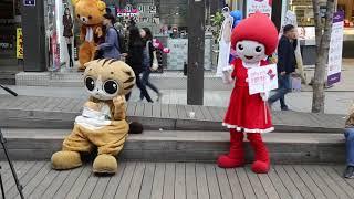 JHKTV]신촌 명물고양이와헌혈댄스  shin chon special cat& 헌혈댄스