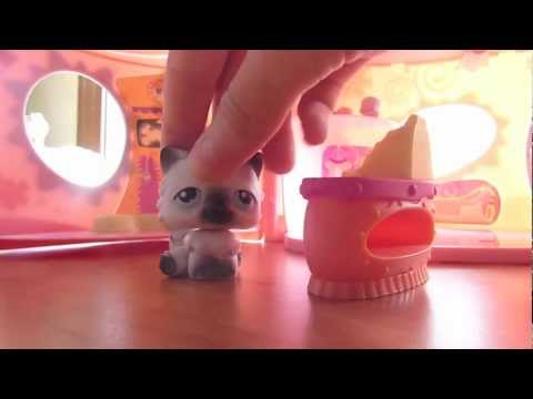 LPS: The Adoption Center (Episode #1) CRAZY EDITION