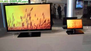 Hisense 15 inch OLED-Tv at CES-2011