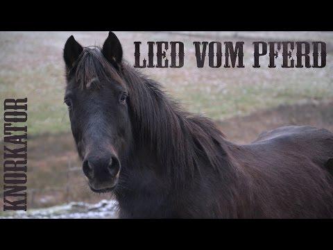 Knorkator - Lied Vom Pferd