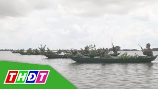 Diễn tập chiến đấu trên đồng nước (18/10/2018) | Quốc phòng | THDT