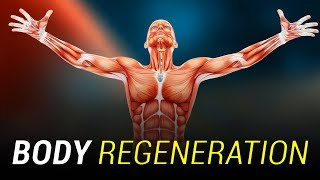 Your Body Constantly Renews Itself
