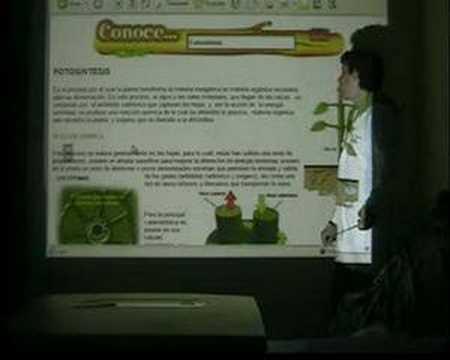 celula vegetal partes. ReinO aNimAl y VeGeTAl ParTE 2