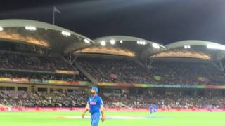 Virat kohli fielding video india vs pakistan match 2015