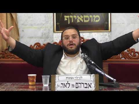 הרב אברהם מימון כבוד התורה וחכמיה