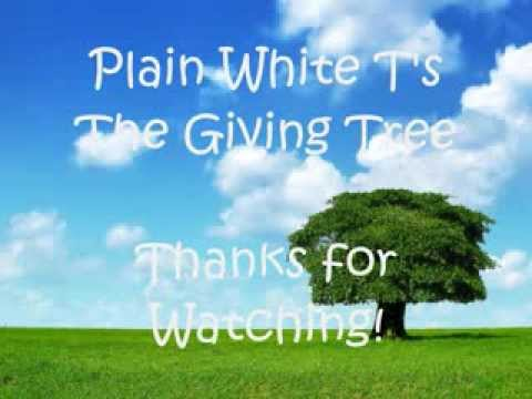 Plain White T's - The Giving Tree Lyrics