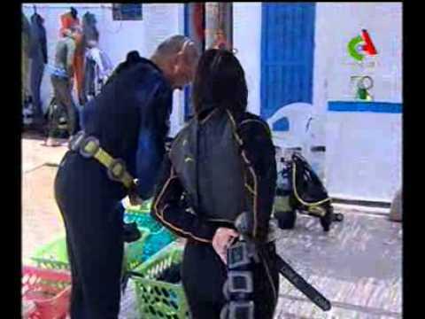 Alger,la Madrague,plongée sous-marine .