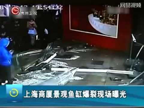 Aquário com tubarões se rompe em shopping de Shanghai