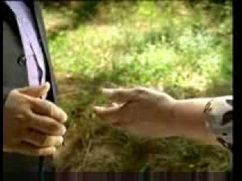 Yaprak Dökümü - 3. Sezon Tanıtım Fragmanı (2008 - 2009)