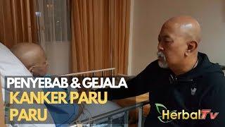 Download Lagu Wajib Nonton ! Penyebab & Gejala KANKER PARU PARU Seperti yang Dialami Istri Indro Warkop Gratis STAFABAND