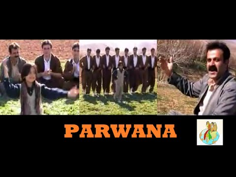 Parwana Music Videos