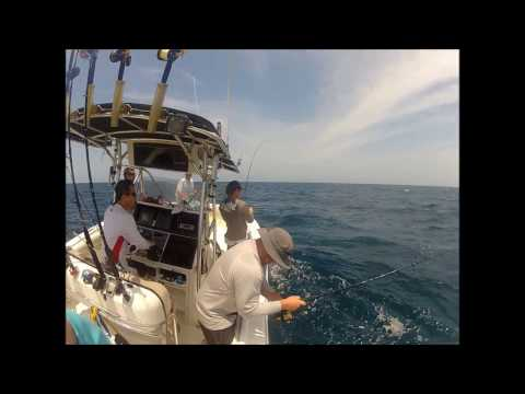 Offshore Fishing in St. Augustine, FL
