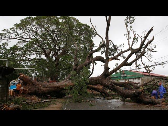 Typhoon Haima Kills 12 In Philippines, Takes Aim At Hong Kong