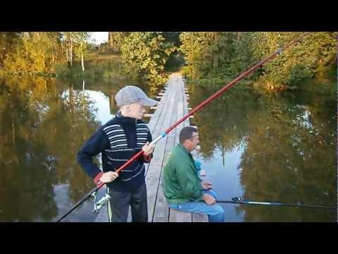 на что ловить линя в просто рыбалка