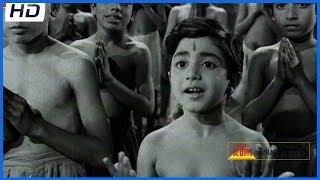 Tallivi Neeve Tandrivi Neeve Video Song - Mooga Nomu Telugu Movie - ANR,Jamuna,S V R