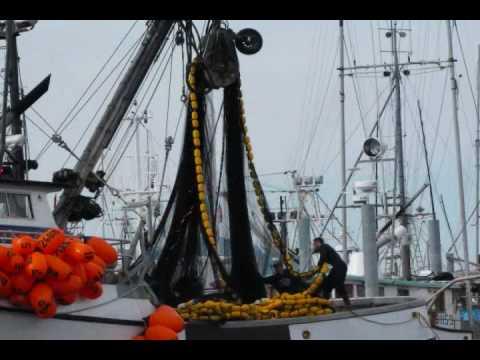 10 cast net alaska commercial fishing jobs for Fishing jobs in alaska