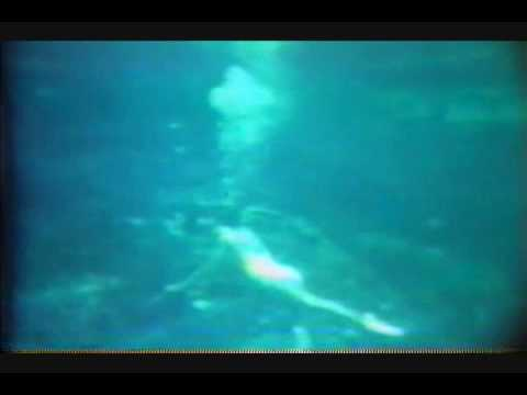 Hawkwind - Dying Seas