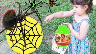 Halloween In Australia Hunting For Spooky Surprise Spider Eggs #Zoeslogic