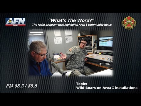 """""""WHAT'S THE WORD?"""" The radio program that highlights news of the Area I community in Korea"""