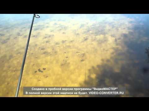рыбалка спиннингом в воронежской области видео 2016