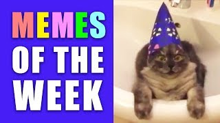 Memes of the Week (Dank Memes Compilation Edgy/Offensive/Funny/Cats)