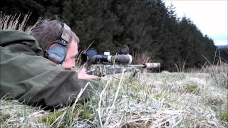 Longrange blog 38: Amax - there will be blood