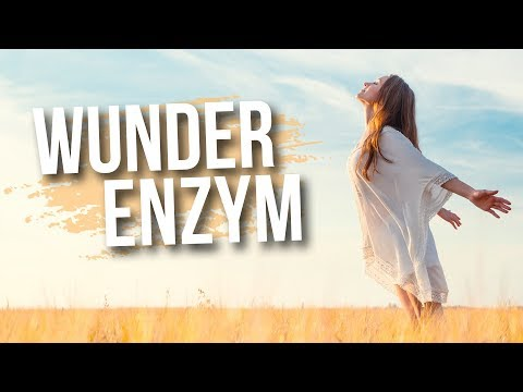 Dieses Enzym verlängert Dein Leben | Dr. Petra Bracht