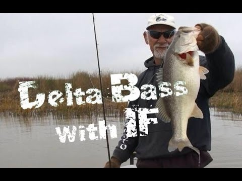 Bass fishing the California Delta Ft. Andy