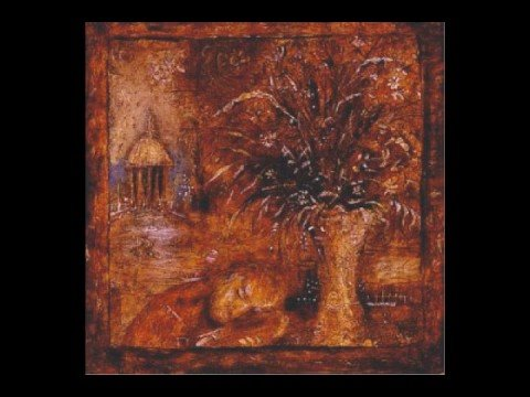 Mewithoutyou - The cure for the pain is in the pain