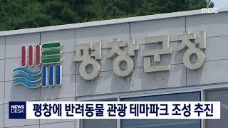 평창에 반려동물 관광 테마파크 조성 추진-일도월투