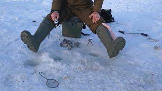 косовский район рыбалка