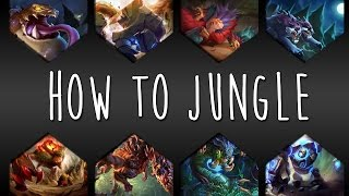 How to Jungle // Basiswissen Jungle // Part 1