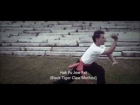 Hung Gar Kung Fu In Donnie Yen's Movie- Dragon : Wu Xia (武俠). Image 1