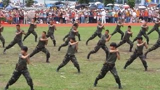 Chinese military to no longer teach kung fu