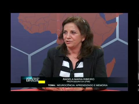 INTERCONEXÃO BRASIL - Neurociências: aprendizado e memória