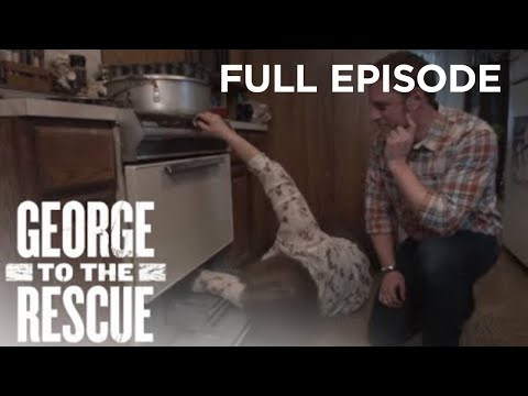 Home Kitchen Renovation For Deserving Chef   George to the Rescue