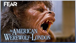 Iconic Wolfman Transformation Scene | An American Werewolf In London