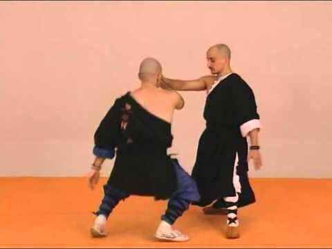 Tai Chi Chuan Combat video