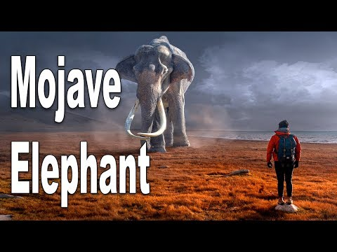 The Mojave Elephant - Unknown Cryptid, Ice-Age Throwback Or Living Dinosaur?