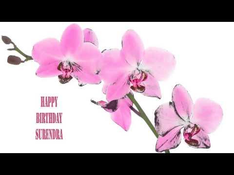 Surendra   Flowers & Flores - Happy Birthday