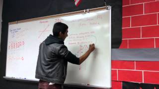 Mrs. DeFraene Calculus Final Project - Continuous & Discontinuous Functions