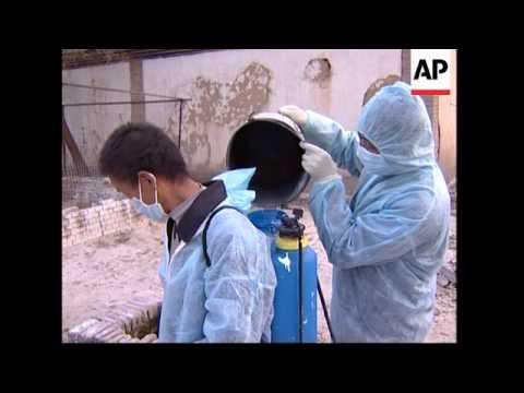 Anti-bird flu measures in Inner Mongolia