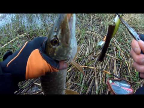 весенняя рыбалка видео на щуку