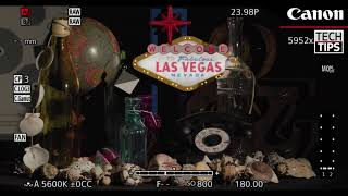 01. Canon Tech Tip: LUTs on the EOS C500 Mark II and EOS C300 Mark III